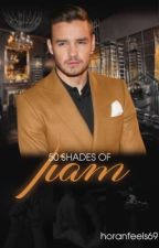 50 Shades Of Liam (BoyXboy/Smut/RatedR/Niam) by horanfeels69