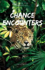 Chance Encounters by swiftkitty