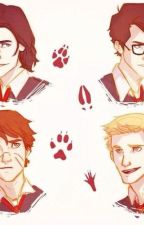 The Marauders Imagines and Preferences by STELLZA1999