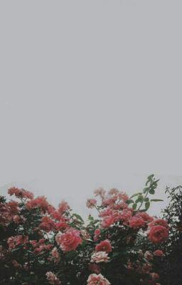 [AllKook] [GaKook] Quay về bên anh