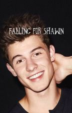 Falling for Shawn || S.M by sirpa05