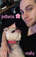 petunia 🌸 muke by kladzix