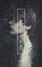 Shelter • wolfstar au by sarsasstic