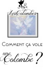 Comment ça vole une Colombe ? by LesColombes