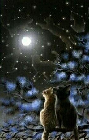 Warrior Cats x Reader Oneshots! by MoonStars4