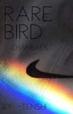 Rare Bird chanbaek;baekyeol by -tenshi