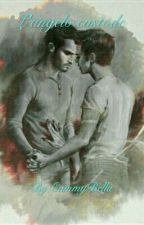 L'angelo Custode-Sterek by fall_in_fandom