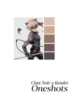 Chat Noir x Reader One-Shots by Art_Chaik