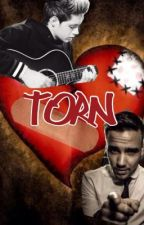 Torn (A One Direction Fanfic) by 36soccergirl