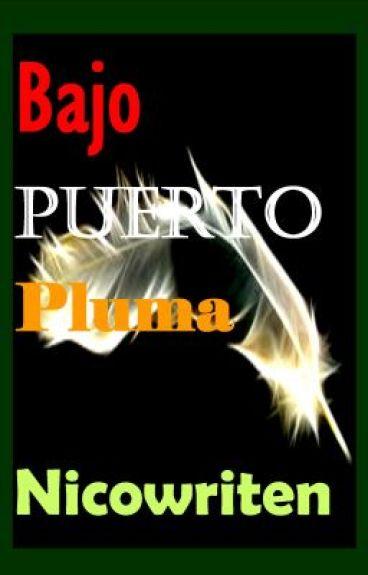 Bajo Puerto Pluma by Nicowriten