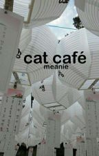 cat café ○ meanie by jinhonk