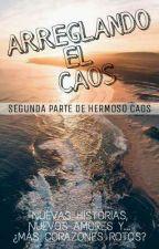 ARREGLANDO EL CAOS (PAUSADA) by DarkSideOfTheLove
