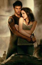 všechno jinak (Twilight saga) ❌ by Crazy_WolF_2