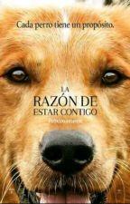 La Razón De Estar Contigo :3 ;3 by -_Manzanita_-