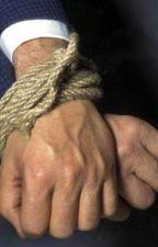 Aus dem Hinterhalt zum Sklaven  by Leogoeckener