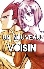 DBZ Couples ~Bulma x Vegeta [Un Nouveau Voisin]~ by fandbz94