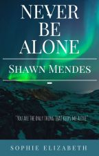 Never Be Alone//Shawn Mendes by glass_soul