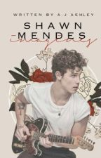 Shawn Mendes Imagines by Mendusbabe