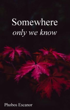 Somewhere Only We Know by PhobosEscanor
