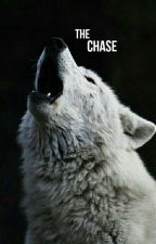 The Chase | Teen Wolf [#2] by hiddenflaws_