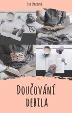 Doučování debila [short story] by bellah2o01