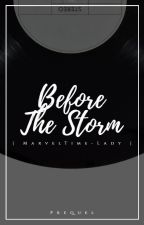 Before The Storm | An Agent Gomez Prequel / ON HOLD by MarvelTime-Lady