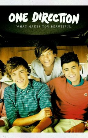 one direction imagines and preferences  by ericasmith2011