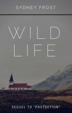 Wild Life (Book 2 of the Protection Saga) by nateh19