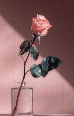 my black rose by bunntgemischt