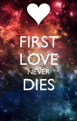 Đọc truyện [Fiveshot] BTS, Seventeen x Fictional Girls - FIRST LOVE ❤️❤️❤️