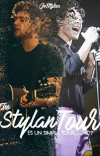 The Stylan Tour!! ||Narry Storan|| by JoStylan