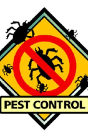 The best Mouse Pest Control company by HNWEB1