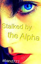 Stalked by the Alpha by aband777