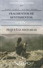 FRAGMENTOS DE SENTIMIENTOS by FaberVillero