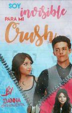 Sou Invisível para O meu crush - ( Ruggarol ) TERMINADA by Jesslightstar18