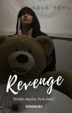 revenge ➳ |pjm+jjk| by hangulika