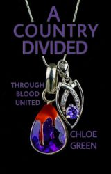 A Country Divided by chloe-green