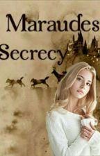 Marauders Secrecy [CZ HP FF] ❌ by peggy_24