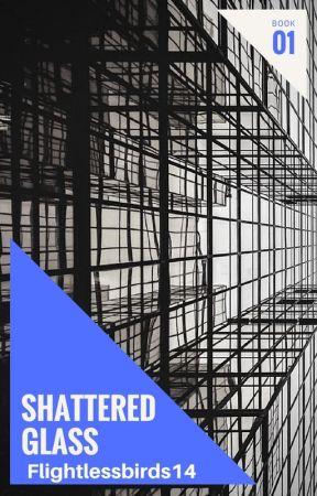 Shattered glass by Flightlessbirds14