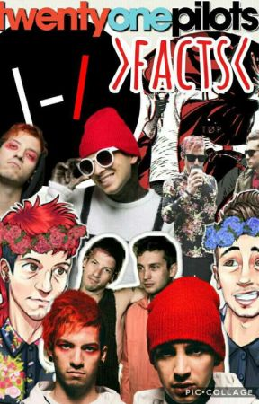 Twenty One Pilots >Facts< by Skytter
