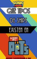 Que tipos de ships existen en TSLOP by MaxRellik