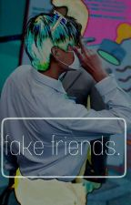 fake friends. by klaineotp