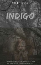INDIGO by chrisnavt