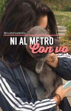 Ni al metro con vo | chilensis. by hueonarara