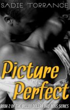 Picture Perfect (Billion Dollar Bad Boys _ Book Two)(Sample Chapters) by bearmama256