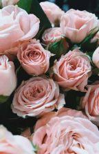 ♡*Ömrüm*♡ by CennetErdem17