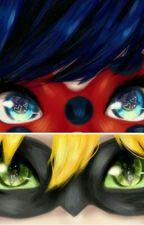 Vice Versa différents derrière le masque by AcreamNeko
