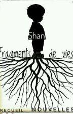 Fragments de Vies by Shan-Kee-Lau