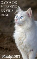Gatos de mi fanfic en vida real!! [SIENDO REESCRITA] by Mialp1507
