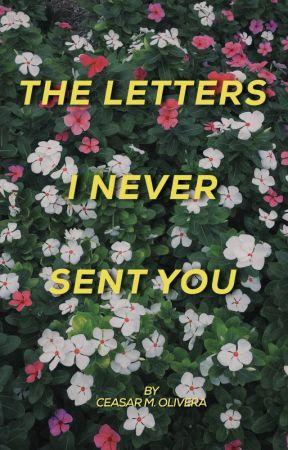 The Letters I Never Sent You by ceasarmolivera